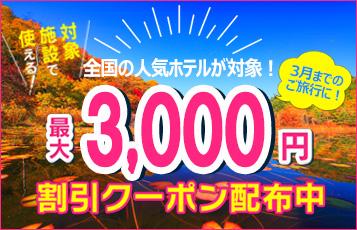 3000円クーポン