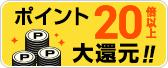 【ポイントGET】ポイント20倍以上のおトクなプラン!