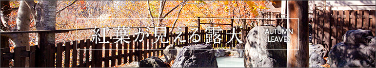 【絶景露天特集】紅葉露天