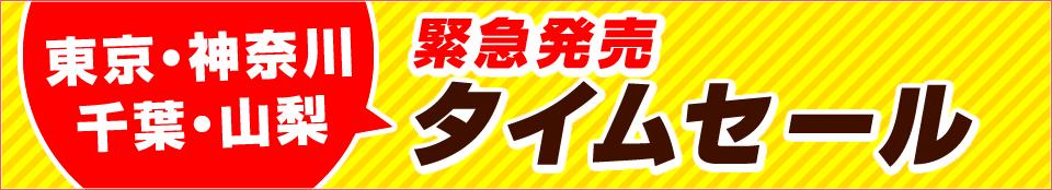 緊急発売タイムセール!