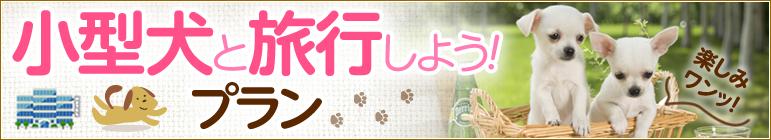 小型犬受入れ可の宿・ホテル【ペットと泊まろう!旅行しよう!特集】