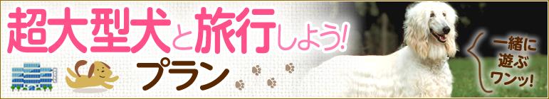超大型犬受入れ可の宿・ホテル【ペットと泊まろう!旅行しよう!特集】