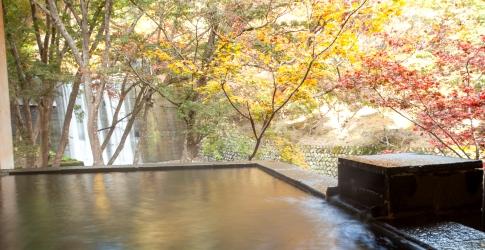 (ホテル名) 船山温泉